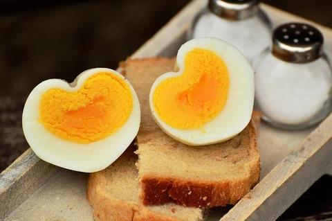 egg-1536990_640