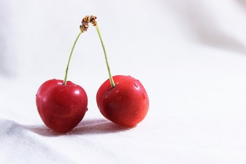 and-cherries-1532123_640