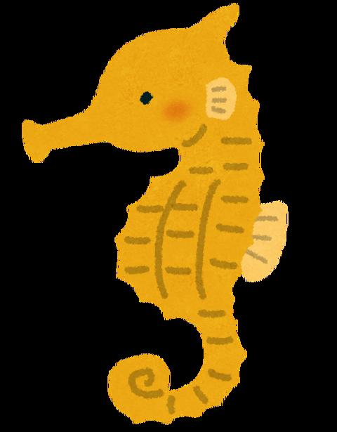 fish_tatsunootoshigo