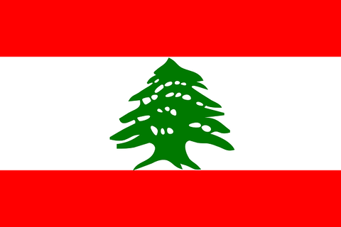 【悲報】レバノン政府さん「助けて! もう経済がボロボロで限界なの…」→ ネットの反応がこちらwwwwwww