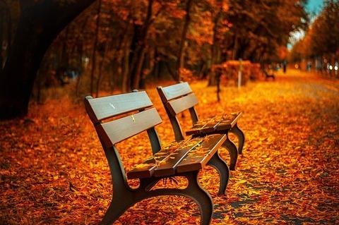 bench-560435_640