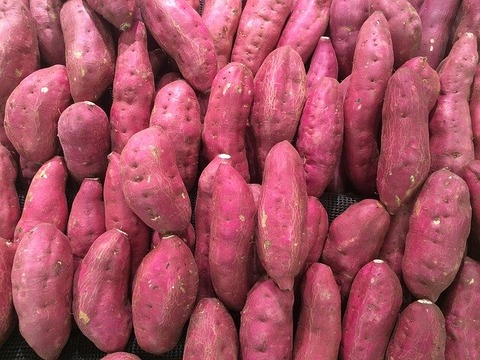 sweet-potato-1666707_640