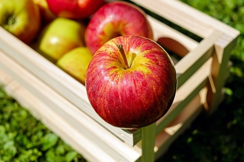 apple-1589869_640