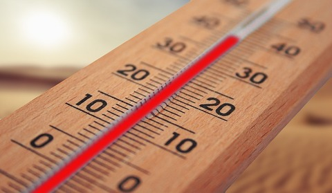 thermometer-4294021_640