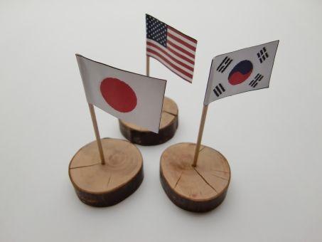 【レーダー照射】日本、韓国に衝撃発言wwwwwwwwww