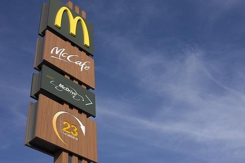 【悲報】マクドナルドで月見バーガー注文したらこうなってたんだけど…(画像あり)