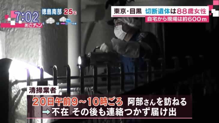 【東京都目黒区碑文谷公園 弁天池 ...