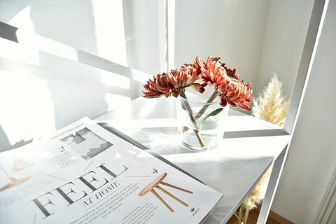 magazine-2559842_640