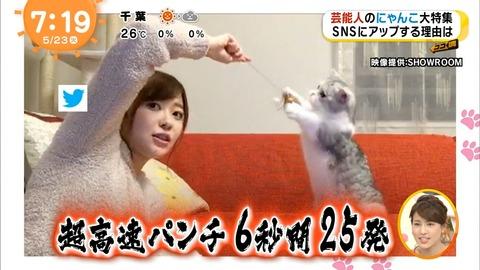 「めざましテレビ」での指原莉乃の猫の名前がwww