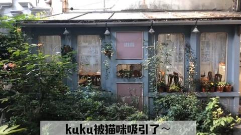 snh張昕vlog上海美食f