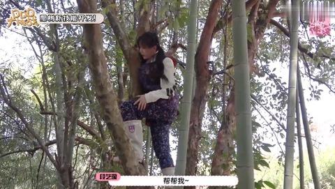 木登りアイドル