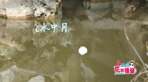 花樣妹妹SNH48揚州g