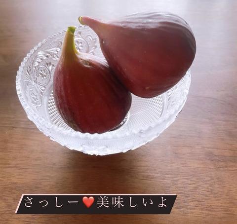 rino004