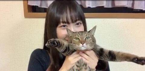 【SKE48】もう諦めの表情じゃないか()