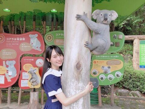【閲覧注意】乃木坂ヲタ、メンバーが抱きついた木に抱きついて昇天wwwwww