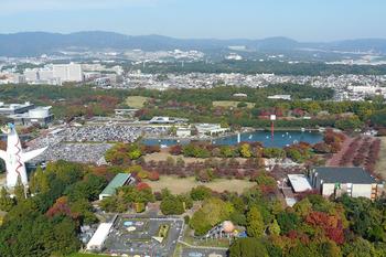 観覧車から見る風景池がある・・・・