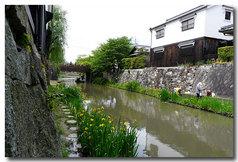 八幡掘と撮影の手漕ぎ船!!