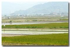 4日田植え風景