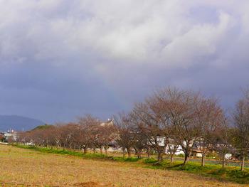虹・・・2回目の虹