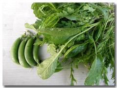 ごちゃませ野菜とスナップエンドウ4個収穫
