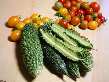 8月8日の収穫