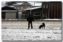 雪の中散歩ラッキー大きいでしょう!!