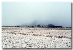 今年3回目・・・26日雪景色