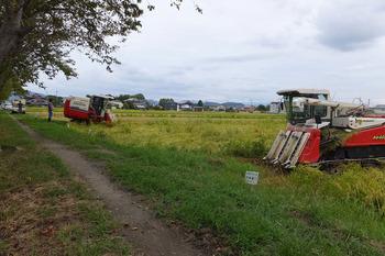 台風21号来る前に稲刈り