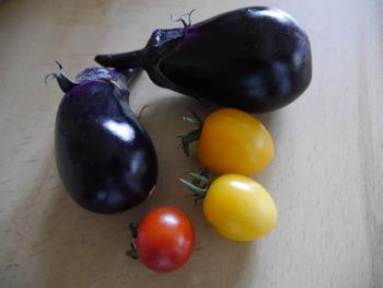 茄子(紫水)、ミニトマトアイコ千果