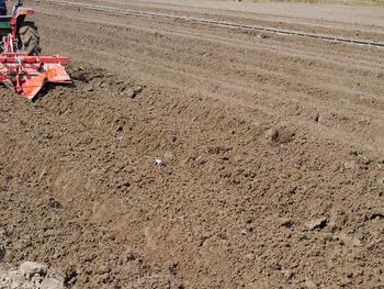 自宅前の田んぼにトラクラーが土お越し