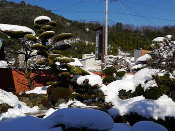 宮前の庭の雪景色