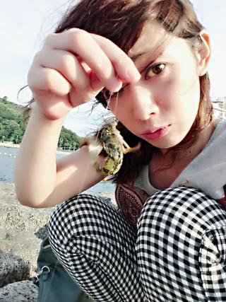 rin-syame