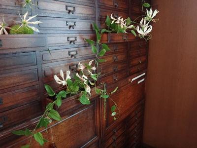 花と器のハーモニー2012