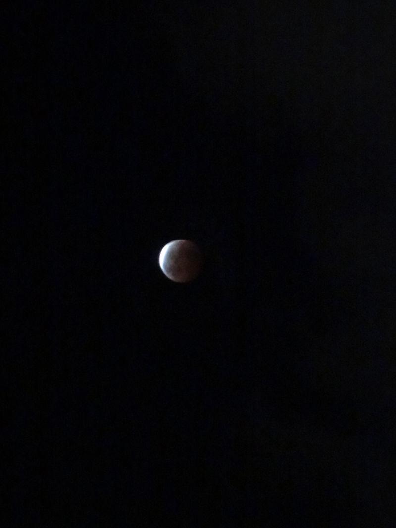 月食2014_1