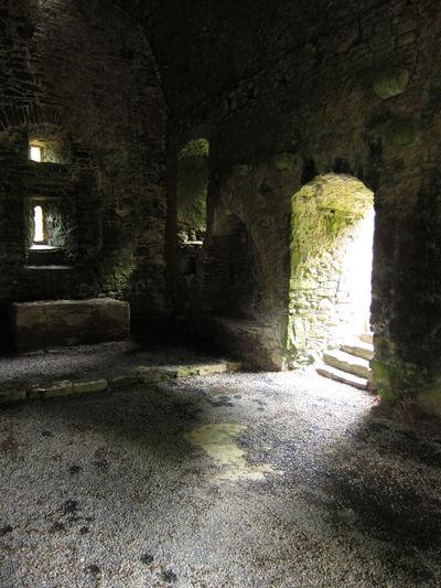 agaviller_Ireland