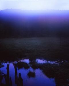 白駒湿地 早暁