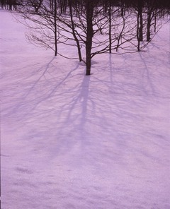 裏磐梯 雪の影 適正露出