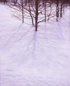 裏磐梯湖畔 雪の影 1段オーバー
