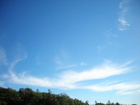 Photo0038