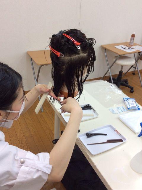 師 試験 美容 国家