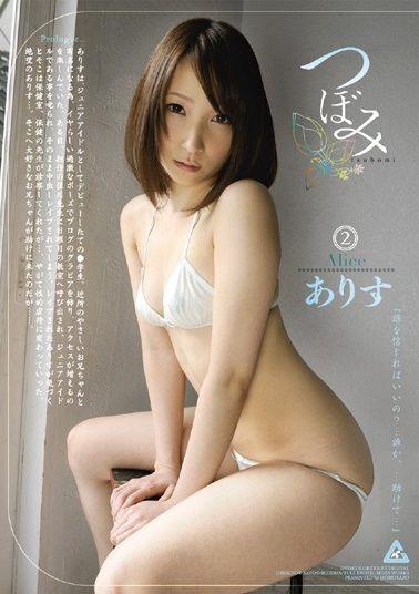 suzukiarisu