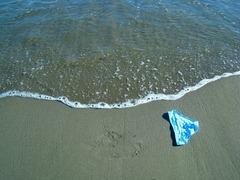 shimapan_on_the_beach_by_xxx_teddybear_xxx-d6qr37i