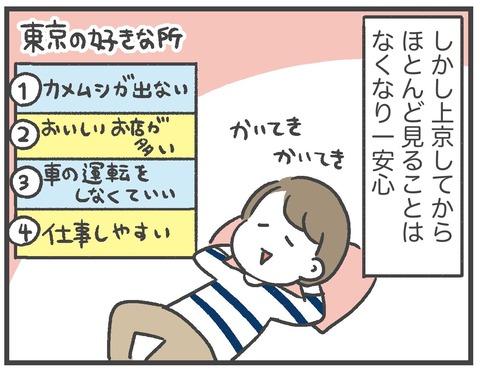 201012_カメムシ襲来03