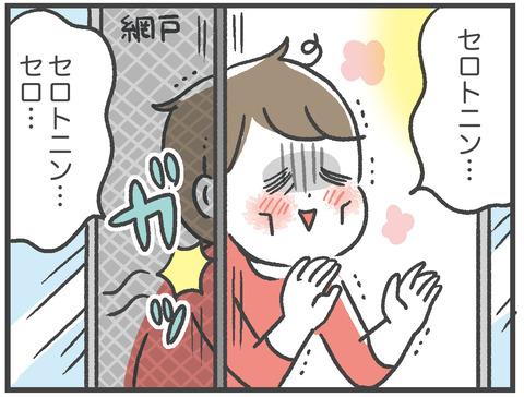 210304_網戸バン05