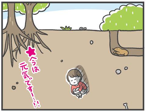 210304_網戸バン08
