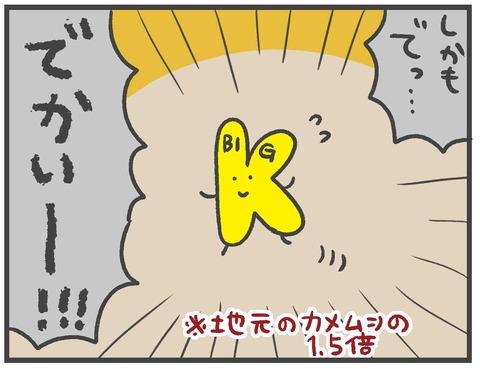 201012_カメムシ襲来06