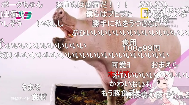 11話 (79)