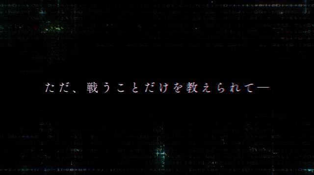 PV (13)
