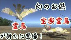 幻のお供(霊鳥・宝楽霊鳥)が新たに登場!240