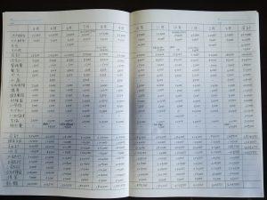 撮影用年間の家計簿